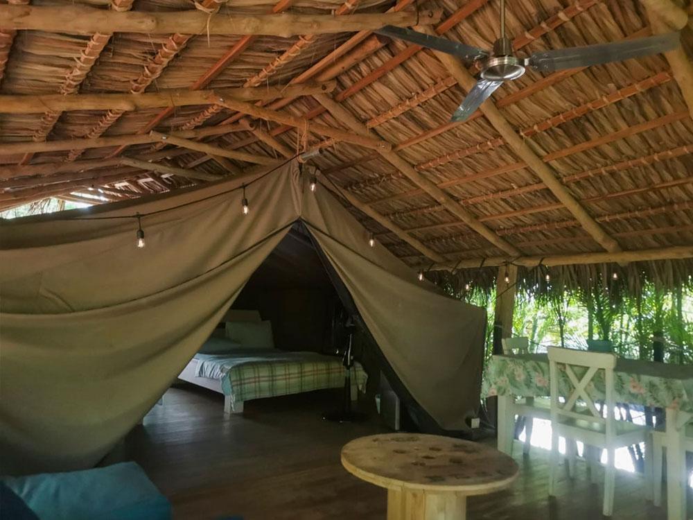 glamping costa rica flor y bambu playa grande tienda baula (1)