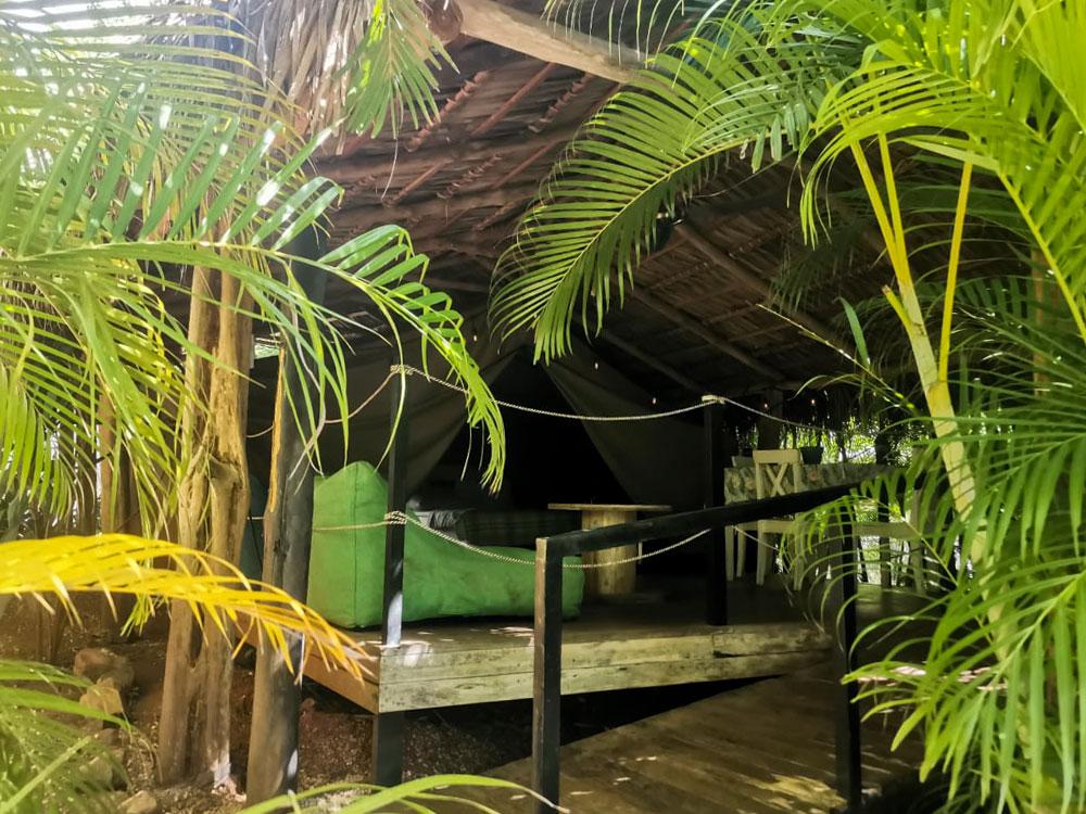 glamping costa rica flor y bambu playa grande tienda baula (2)